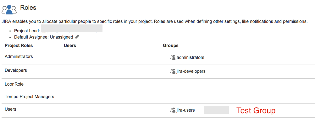Add Single Project Group to JIRA Project Roles