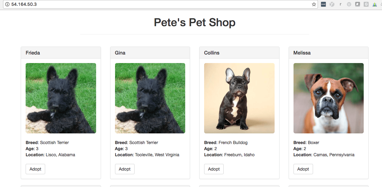 Ethereum Truffle Pet Shop on AWS EC2